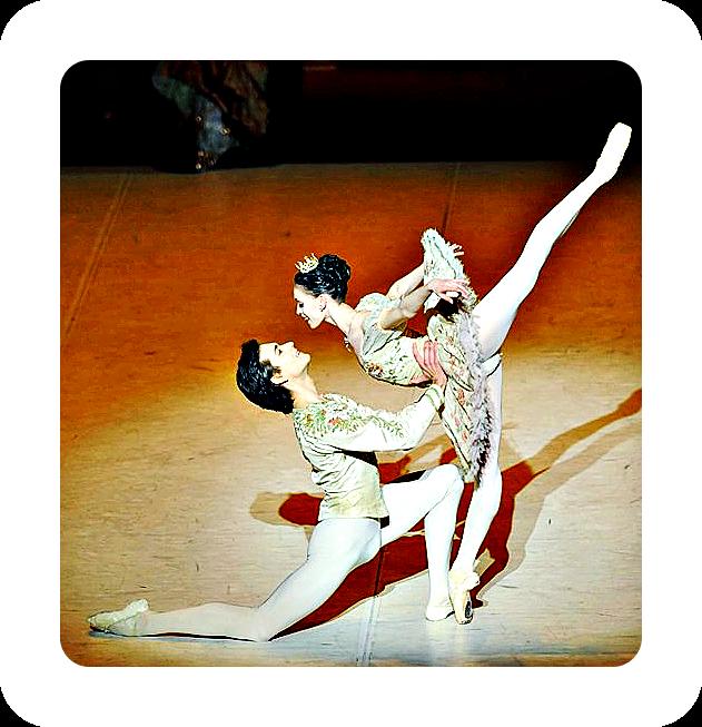 Dornröschen ist ein Ballett-Kunstmärchen auch für Erwachsene.