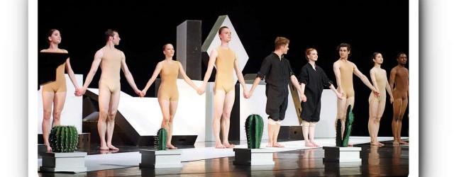 Kakteen sind keine Menschen - nicht mal im Ballett.