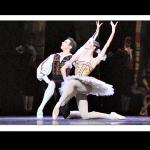 """""""Don Quixote"""" in Bestform in Wien."""