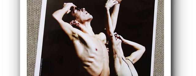 Die Jungen Choreografen sind ein Publikumsrenner.