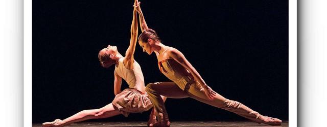Zwei Choreografen - ein Abend.