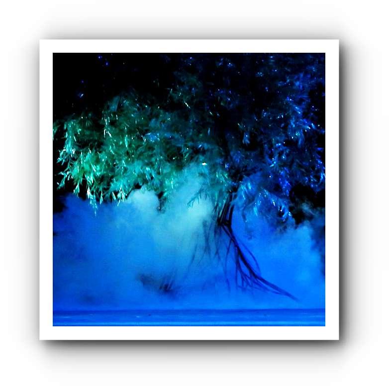Titania im Sommernachtstraum - eine Pracht