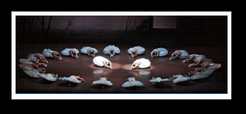 """Der """"Schwanensee"""" von John Cranko hat einen eigenen Schwerpunkt"""