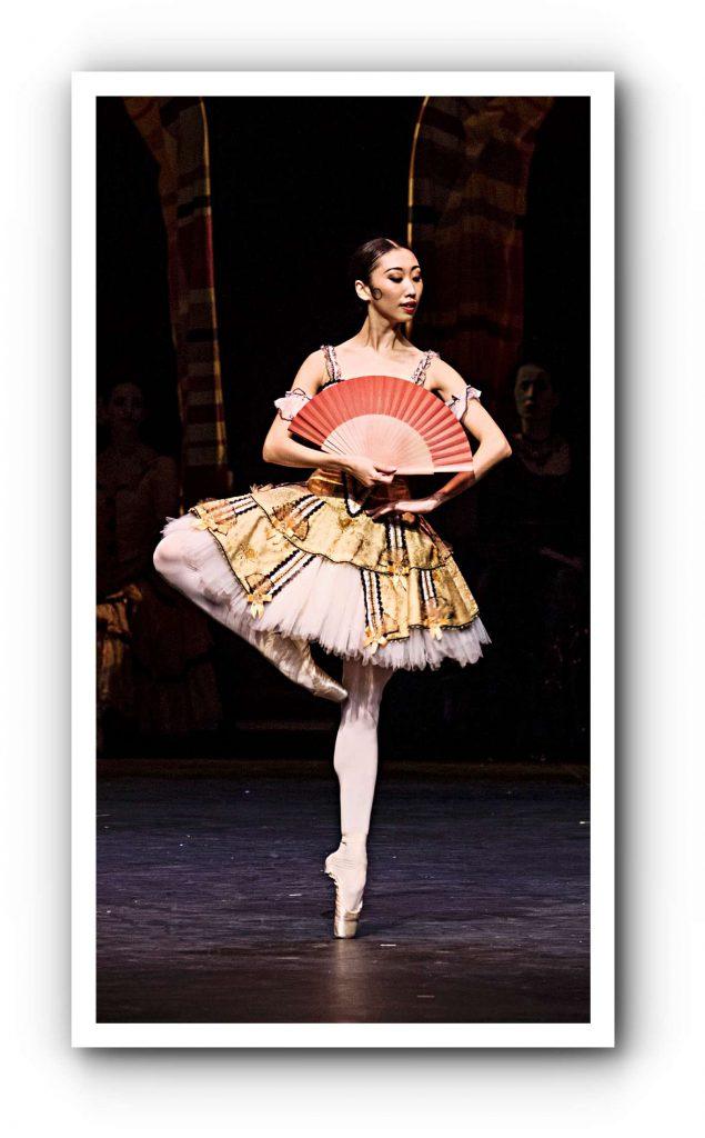 Don Quixote tanzt auch alternierend beim Hamburg Ballett