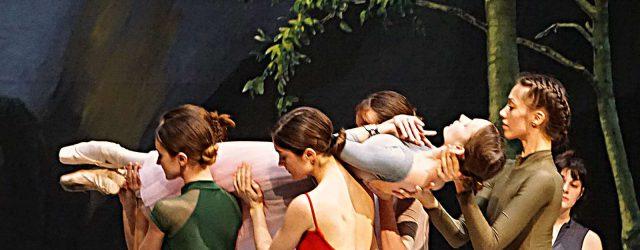 """""""La Sylphide"""" ist echt dänisch"""