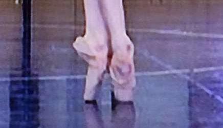 Das Titelbild der DVD zeigt schon, wieviel Spaß Ballett und Spitzenschuhtanz machen. - The cover pic of the DVD shows how much fun ballet and toe-dance can be.